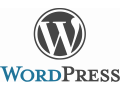 i-will-create-professional-word-press-website-small-0