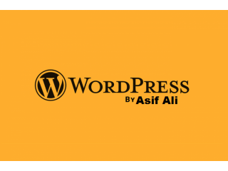 I will design, redesign, or fix a word press website