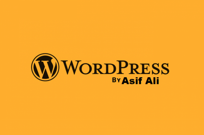 i-will-design-redesign-or-fix-a-word-press-website-big-0