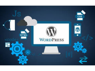 9 years of WordPress designing experience