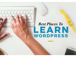 I will be your WordPress trainer tutor coach virtual assistant