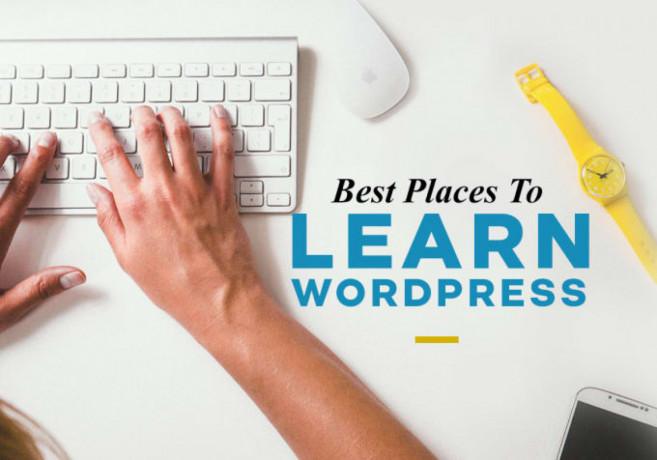 i-will-be-your-wordpress-trainer-tutor-coach-virtual-assistant-big-0