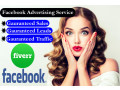 i-will-get-you-massive-sales-with-facebook-advertising-small-0