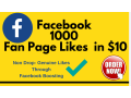 i-will-provide-1000-facebook-fan-page-likes-in-1650-small-0