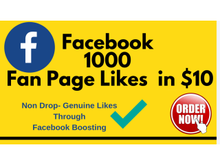 I Will Provide 1000 Facebook Fan Page Likes in 1650