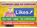 i-will-run-a-facebook-ad-campaign-to-grow-page-likes-small-0