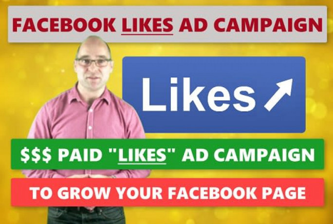 i-will-run-a-facebook-ad-campaign-to-grow-page-likes-big-0