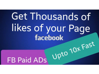 I will create facebook ads to grow your page likes