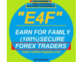 e4fsb-forex-trader-services-and-money-management-autocopy-service-small-0