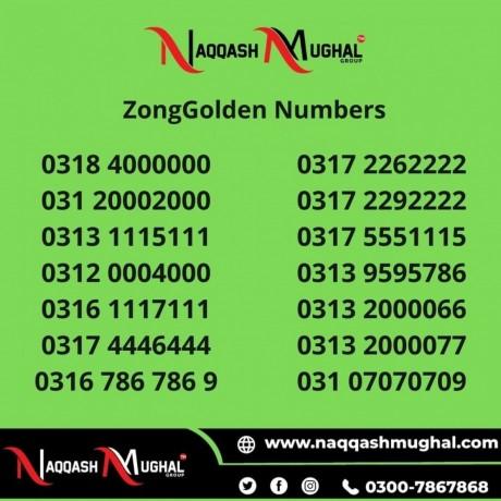 zong-golden-numbers-in-pakistan-big-0