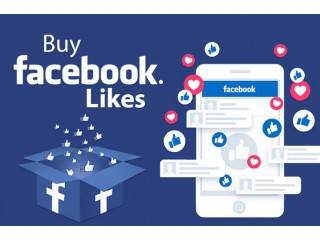 I will run facebook ads to grow your page likes