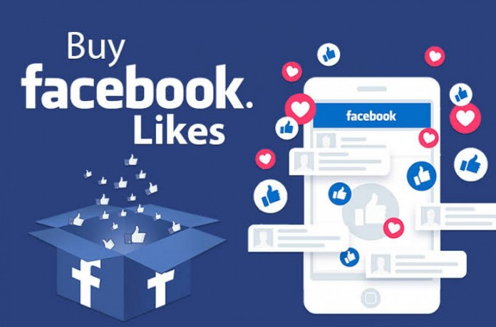 i-will-run-facebook-ads-to-grow-your-page-likes-big-0