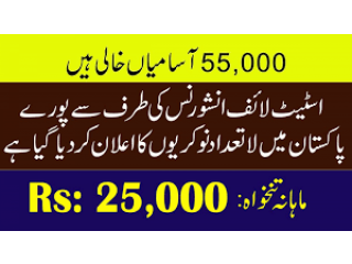 Jobs Available In Karachi State Life Pakistan