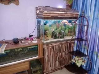 3 Feet new Condition Aquarium