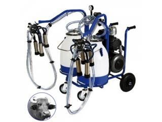 Buffalo milking machine Turkey